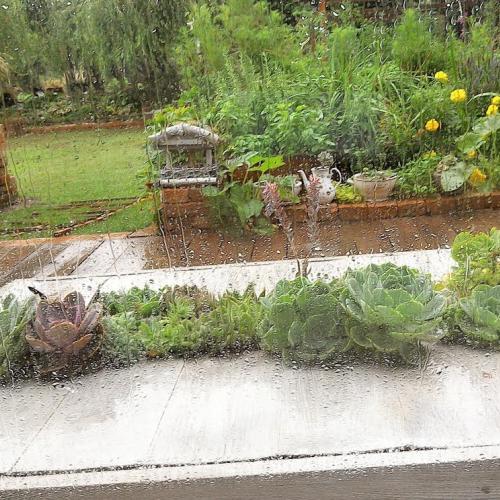 zas augustové záplavy ?? ((