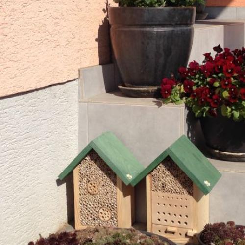 pre včielky samotárky :)