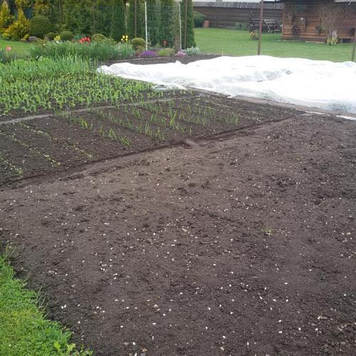 starostlivosť o záhradu