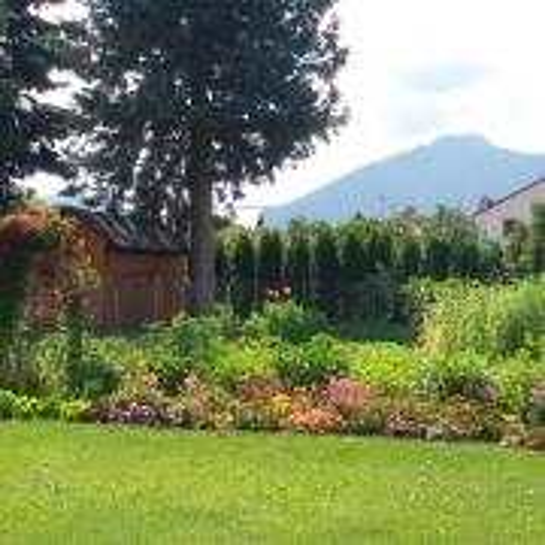 Zeleninová, kvetinová záhrada a iné