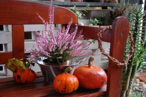 Takže  jesenná...