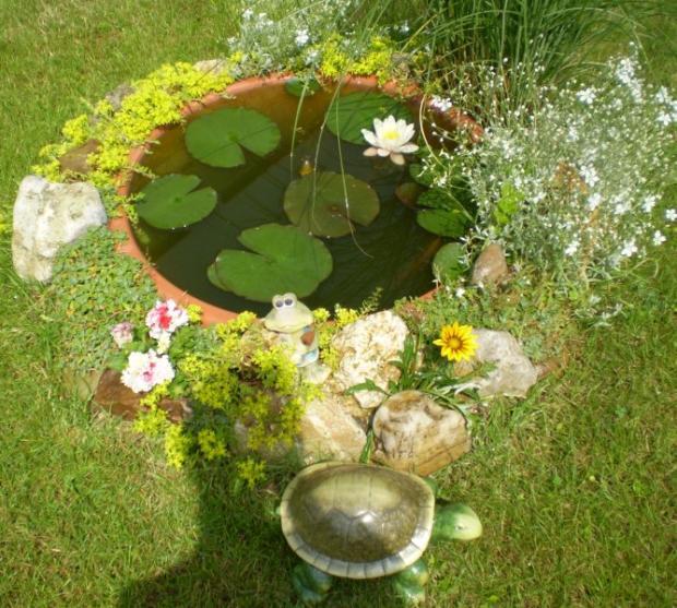 Jazierko z kvetináča